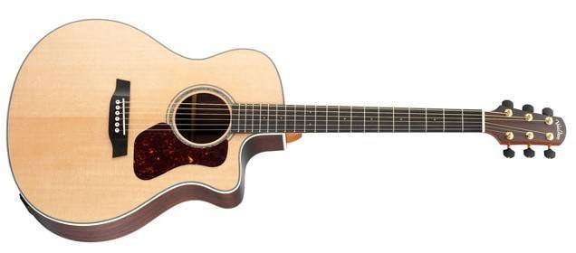 The World of Walden Guitars - Best Acoustic Guitar Guide