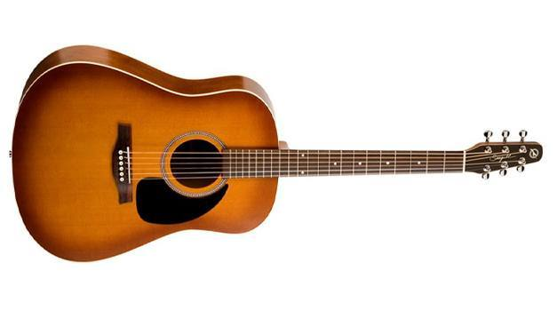 Seagull Entourage Rustic Acoustic Guitar Review
