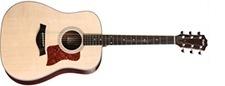 Taylor 210