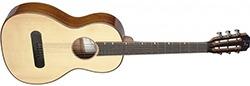 James Neligan LIS-P Parlor Acoustic Guitar