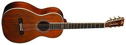 Washburn R319SWKK Parlor Acoustic Guitar Vintage Natural