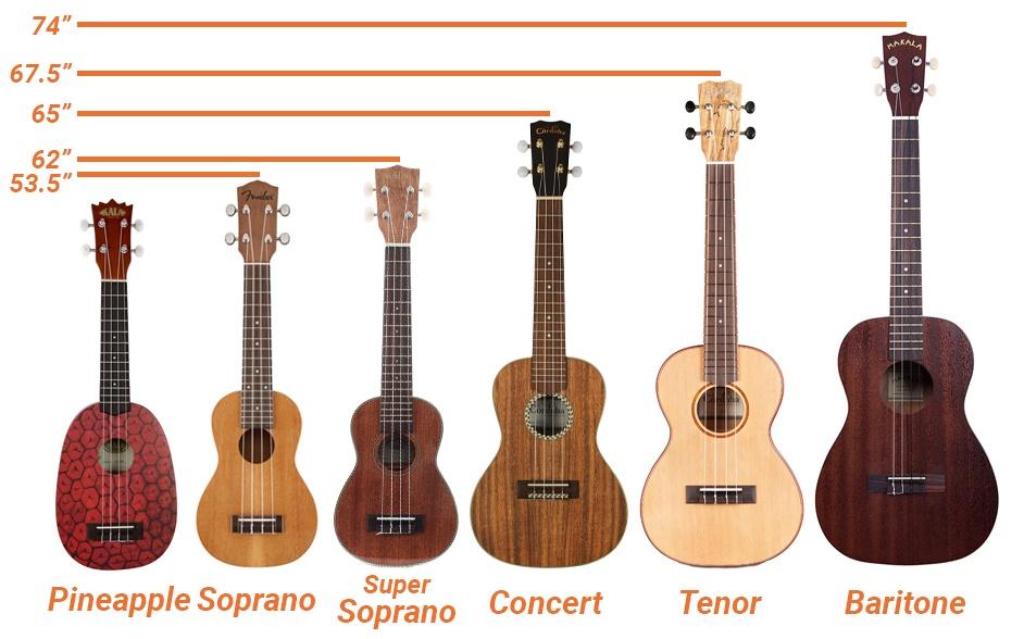 Size Of Ukuleles : ukulele sizes all 6 types of ukuleles ~ Vivirlamusica.com Haus und Dekorationen